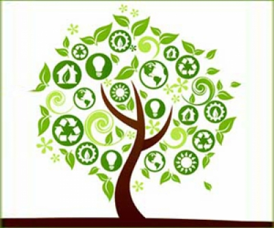 Green dental offices: A perfect choice for our practices and the environment